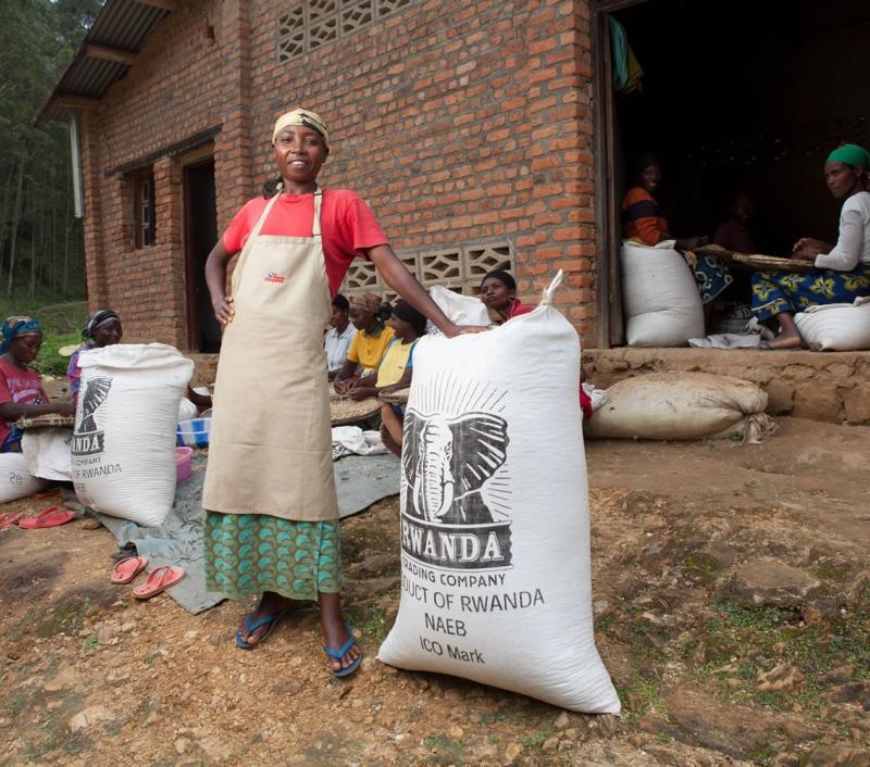 rwanda-nyungwe